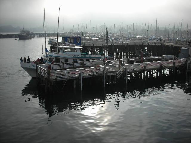 Monterey%20harbor%20fog.jpg
