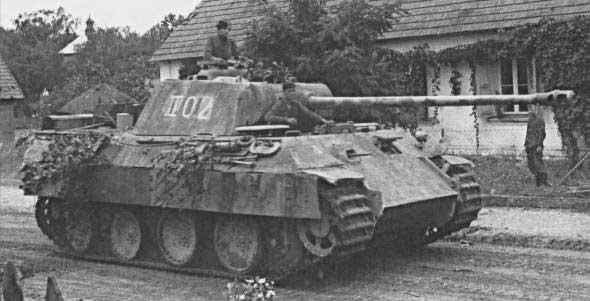 Panther%20V.jpg
