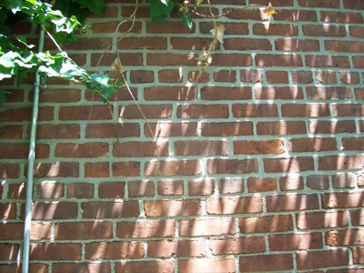 trad_brick_shadows008.jpg